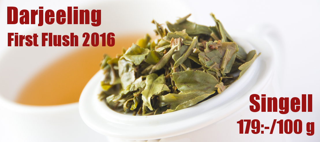 Darjeeling First Flush - Singell 2016