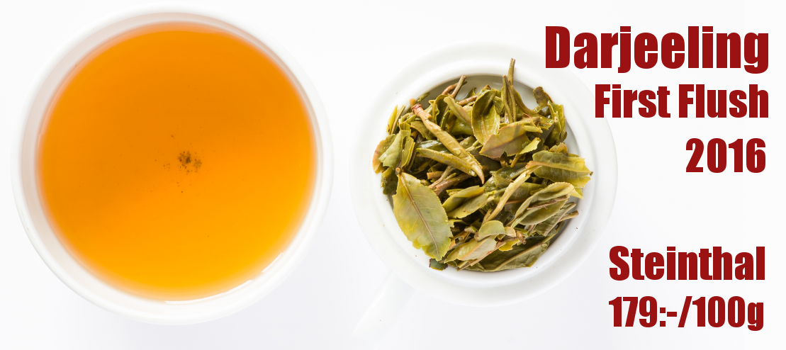 Darjeeling First Flush - Steinthal 2016